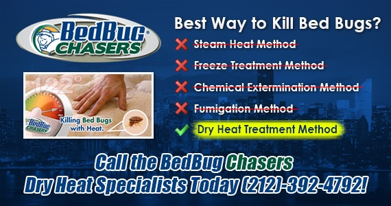 Bed Bug Heat Treatment QUEENS, get rid of bed bugs QUEENS, how to get rid of bed bugs QUEENS. QUEENS bed bugs treatment, QUEENS bed bugs heat treatment, Bed Bug Heat Treatment BROOKLYN, get rid of bed bugs BROOKLYN, how to get rid of bed bugs BROOKLYN. BROOKLYN bed bugs treatment, BROOKLYN bed bugs heat treatment