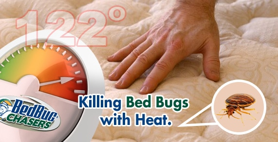 Killing Bed Bugs WIth Heat