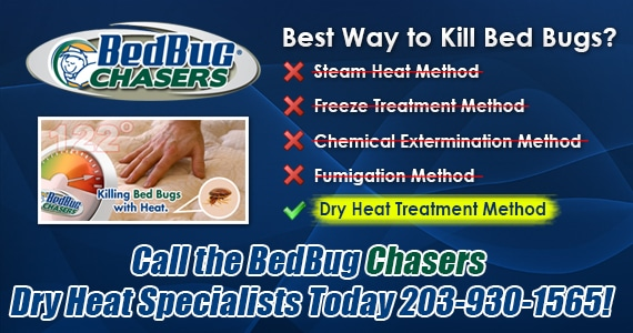 Bed Bug Heat Treatment New London County Connecticut, kill bed bugs New London County CT