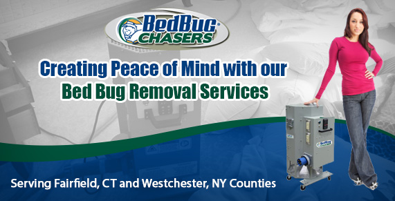 Bed Bug pictures CT . Bed Bug treatment CT. Bed Bug heat CT