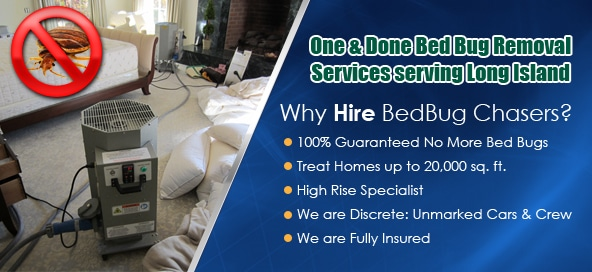 get rid of bed bugs Long Island, kill bed bugs Long Island, bed bug heat Long Island, bed bug treatment Long Island, bed bug spray Long Island, bed bug pictures Long Island, bed bug bites Long Island