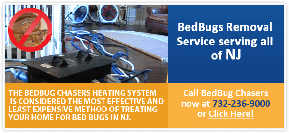 heat kills NJ bed bug eggs, Bed Bugs Treatment NJ, Bed Bugs Treatment NY, Bed Bug heat Treatment NJ, Bed Bug Treatment PA, Bed Bug heat Treatment NYC