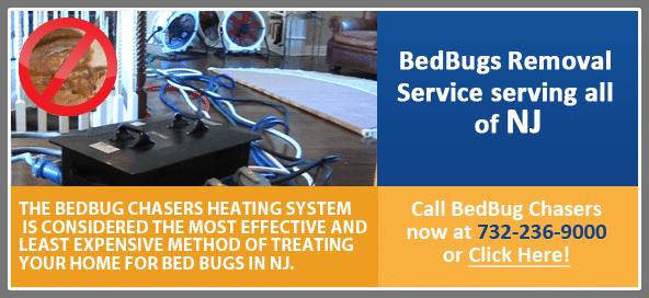 heat kills NJ bed bug eggs, Bed Bugs Treatment NJ, Bed Bugs Treatment NY, Bed Bug heat Treatment NJ, Bed Bug Treatment PA, Bed Bug heat Treatment NYC