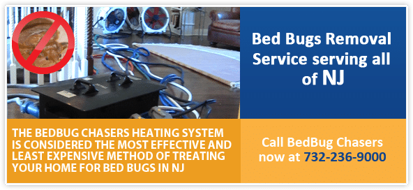 NJ bed bug heat treatment, Bed Bugs Treatment NJ, Bed Bug Treatment NYC, NJ Bed Bugs Treatment, Bed Bugs Treatment Philly, Bed Bug heat Treatment NJ