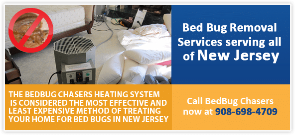 NJ Bed Bug Heat Treatment Services