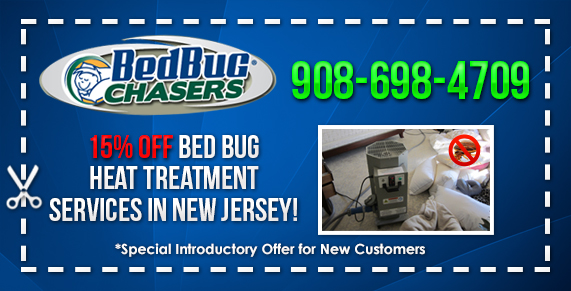 Discounted Bed Bug Heat Treatment in Mercer County, NJ NYC PA NY Philly Brooklyn Bronx Staten Island Queens Manhattan Long Island City