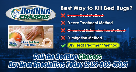 Bed Bug Removal in Staten Island NY NJ NYC Manhattan Brooklyn Staten Island Queens Long Island City Bronx Westchester Rockland