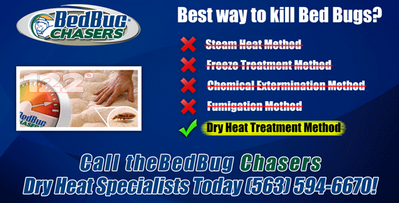 bed bug treatment IA, bed bug heat IA, bed bug bites IA, bed bug spray IA, bed bug treatment IL, bed bug heat IL, bed bug bites IL, bed bug spray IL