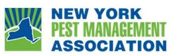 get rid of bed bugs NY, NY bed bug heat treatment, bed bugs treatment NY, kill NY bed bugs