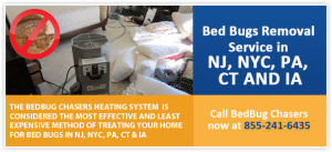 bed bug removal with heat NJ,NY,NYC,PA,IA,FL