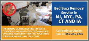 bed bug removal with heat NJ,NY,NYC,PA,IA,FL