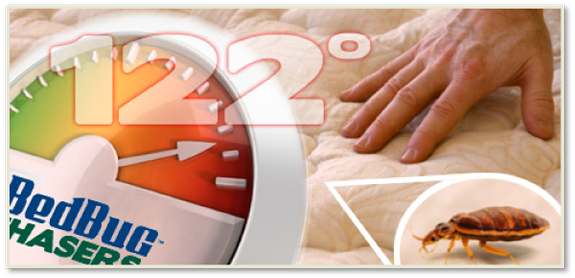Bed Bug Control NJ, Bed Bug Control NY, Bed Bug Control CT, Bed Bug Control PA, Bed Bug Control IA