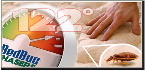 Bed Bug Control NJ, Bed Bug Control NY, Bed Bug Control CT, Bed Bug Control PA, Bed Bug Control IA