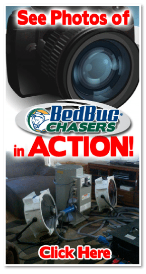 Why Our Bed Bug Heaters Bedbug Chasers Heat More